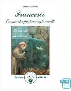 Francesco, l'uomo che...